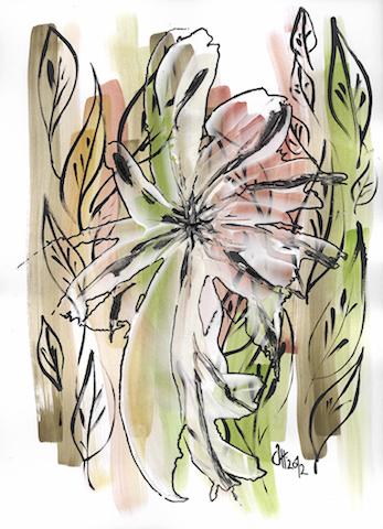 119.Blumen-Spaetherbst.jpg